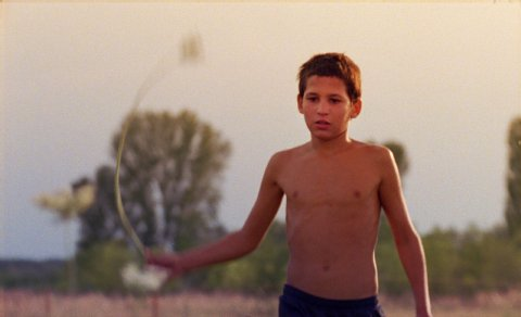 Lajos Sárkány als Roma-Junge Rio in Bence Fliegaufs Just the Wind, courtesy Berlinale